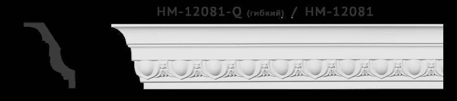 hm12081