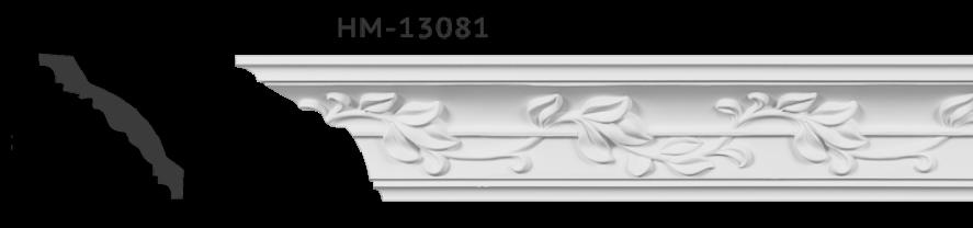 hm13081